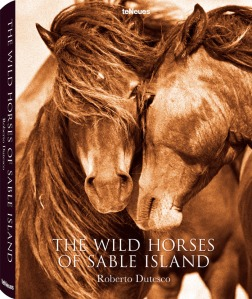 Cover-for-The-Wild-Horses-of-Sable-Island-by-Roberto-Dutesco-on-teNeus-Publishing