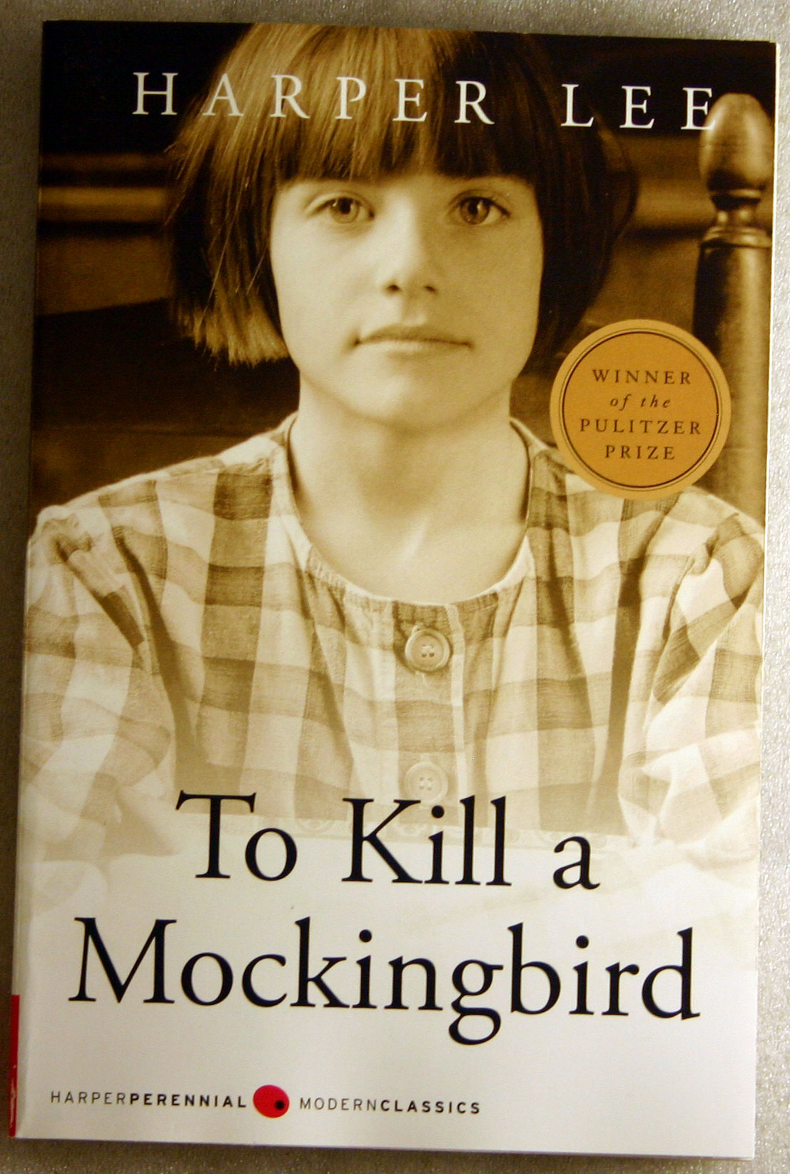 harper lee essays a essay harper lee wrote best essay writers a essay harper lee wrote best essay writers middot description to kill a mockingbird